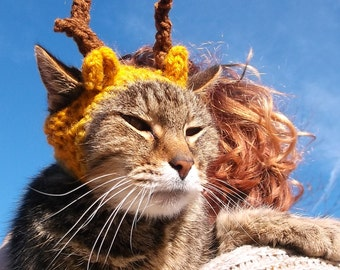 Deer Cat Hat. Deer Cat Costume