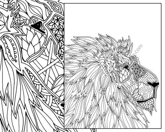 Animal Coloring Page, Adult Coloring Page, Digital Lion Coloring Pdf,  Zentangle Lion Pdf, Lion Printable, Digital Lion, Animal Coloring Book