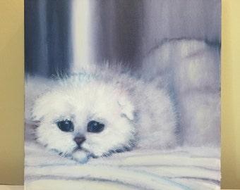 Original oil painting of white kitten on studio canvas.