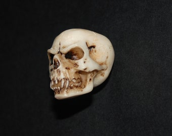 Skull pull,Door Drawer, Cabinet, Wardrobe,Pull, Knob,tool box,handle,bone color skull