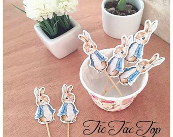 12pcs Peter Rabbit Cupcake Topper Picks. Food Picks Bunny