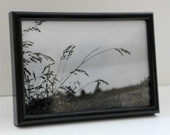 Black and white field scene: Framed photo