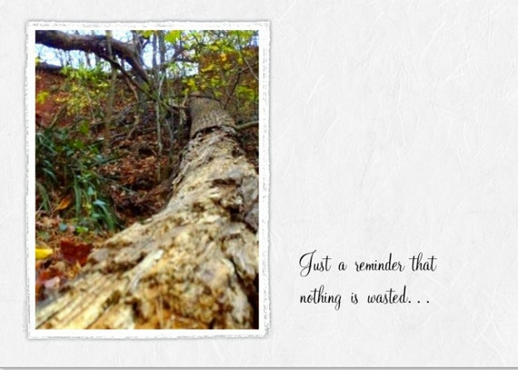 Encouragement (BRG)~  Nothing is Wasted