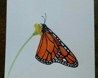 Monarch butterfly on a dandelion original art watercolor
