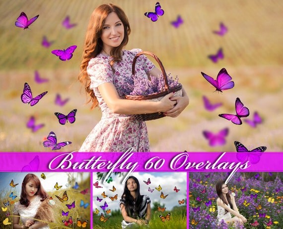 60 butterfly overlays photoshop overlays natural butterfly