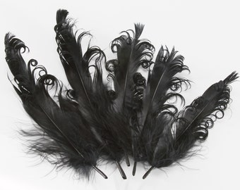 "Pitch Black Goose Nagorie Wing Feathers | Pack of 50 pcs | 4-6"" Long"