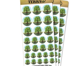 Old Weeping Willow Tree Removable Matte Sticker Sheets Set