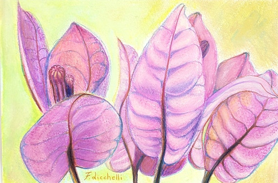 Bouganvillea flowers, original drawing, ooak, mixed media on paper, gift idea, wall art, sister's birthday , bedroom art, lounge decoration.