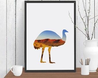 Emu Print, Wall Art, Animal, Room Decor, Australian, Wildlife, Minimalist, Poster, Child Baby Nursery A4 A3 A2 8x10 11x14 12x18 16x20