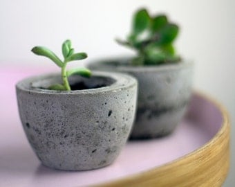 Concrete Planter - Concrete Pot - Housewarming Gift - Plant Pot - Planter - Gardening Gift - Christmas Gift - Gift For Her - Cactus Planter