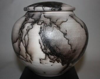 Horsehair Jar II