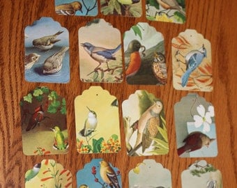 15 Handmade Bird Tags - Bird Ephemera - Vintage Bird Tags