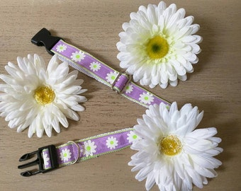 Handmade Dog Collar