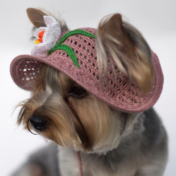 Hat For Dog Narcissus Party Hats For Dogs Crochet Dog Hat