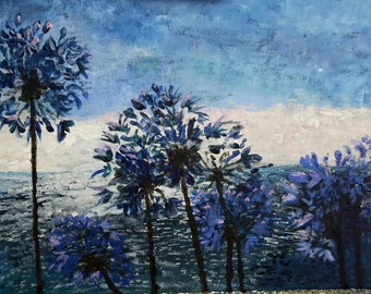 Impressions of Agapanthus