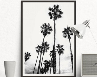 Black &  White palms. Photography palms.  Black white tropical print. Beach illustration. Nature poster. Printable tree. Poster tree