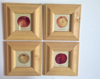 Set of FOUR, Print, Prints, Apple Prints, Apple