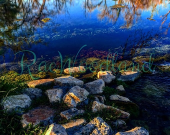 Reflections signed print