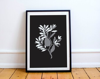 Modern Botanical Banksia on black A4 Print - Monochrome chic