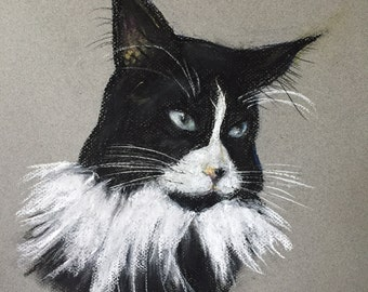 Cat Pet PORTRAITS CUSTOM - CATS