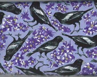 Black Birds on Purple, Northcott