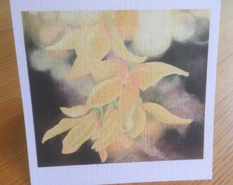 Forsythia Blank Art Card