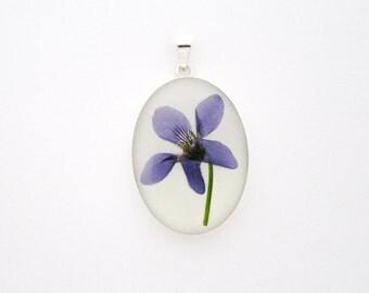 Dog Violet Pendant. Sterling Silver 925 Botanical Necklace with real flower specimen.