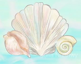 Mermaid Sea Shells