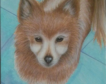 Custom Colored Pet/Animal Portrait 9in by 12in