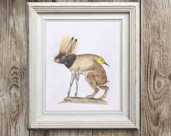 BirdBacPorcHoofer Print, Mythical animal, Original Art print Collage