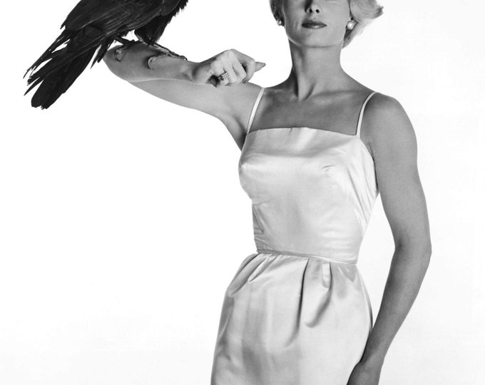 "Actress Tippi Hedren in the Alfred Hitchcock Film ""The Birds"" - 5X7, 8X10 or 11X14 Publicity Photo (NN-120)"