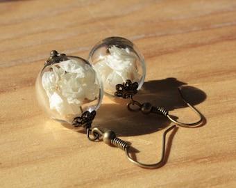 Earrings, Globe/ball glass, Statice white-beige flowers, 16mm