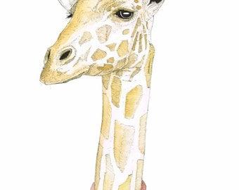 Madam giraffe