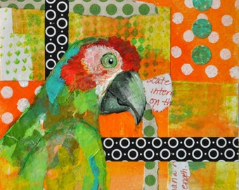 Parrot in Paradise {ORIGINAL}