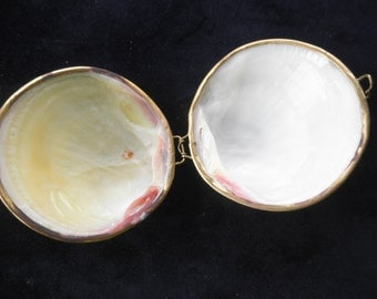 Vintage Hand made Clam Shell purse  Trinkets box Dresser Piece Quality Made Unique Collectible Compact