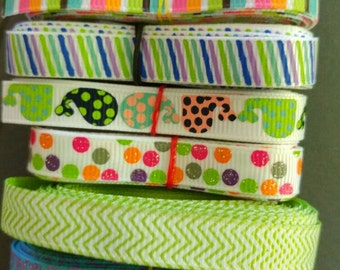 Small dog collar 1/2 in