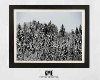 Swiss Alps: Print 006