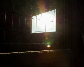 Chicken Coop wire window in the sun Digital photo download, fine art