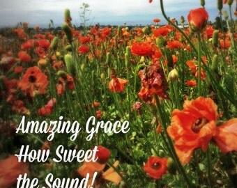 Flower Field Inspirations