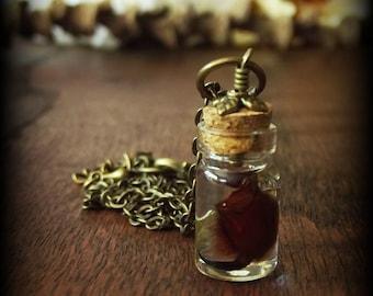 Fang Specimen Necklace
