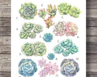 Watercolor Succulents | Botanical illustration | Watercolor handpainted | blue turquoise aqua | succulents -  Printable wall art