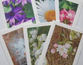 Flower Photo Cards, Blank Note Card Set, Greeting Cards, All Occasion Cards, Mother's Day, Flower Photos,  Frameable Print, Photo Note Cards