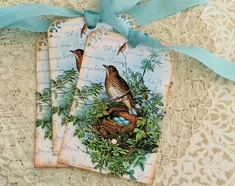 Bird Nest Tags -  Woodthrush Tags - Vintage Woodthrush Nest, Blue Eggs, Woodland Tags - Set of 6