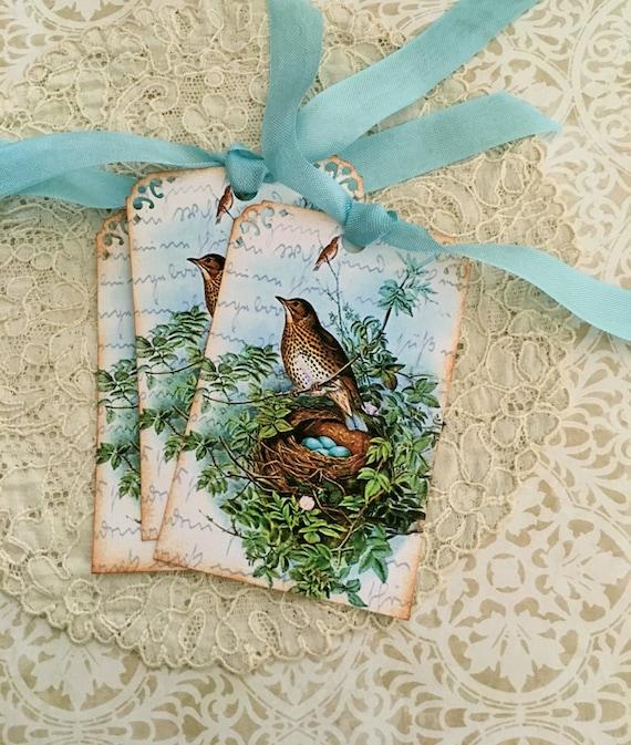 Bird Nest Tags -  Woodthrush Tags - Vintage Woodthrush Nest, Blue Eggs, Woodland Tags - Set of 3