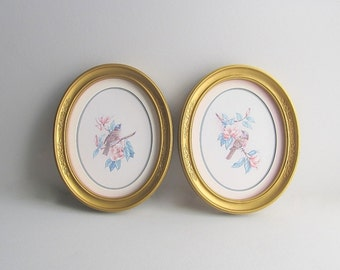Vintage Bird Wall Pictures, Bird Pictures, Hanging Pictures, Oval Frames