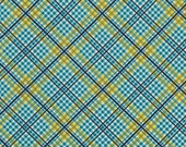 Complex Plaid Willow - Shelburne Falls - FreeSpirit Fabrics - Denyse Schmidt - PWDS039.WILLO