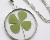 four leaf clover necklace - real four leaf clover - st patricks day -  pressed flower - statement necklace - 4 leaf clover