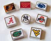 Custom Team Floating Charms, will fit any brand of floating charm locket necklaces
