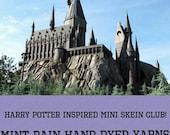Harry Potter Inspired Mini Skein Club - September Pre-Order