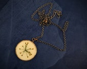 Dill flower herbal necklace